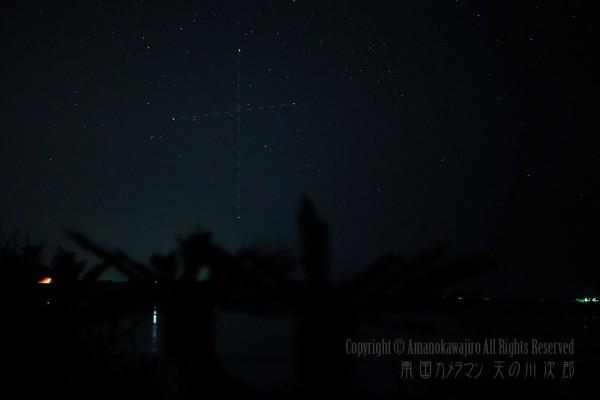 南十字星と海とソテツ